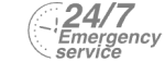24/7 Emergency Service Pest Control in Chelsea, SW3. Call Now! 020 8166 9746